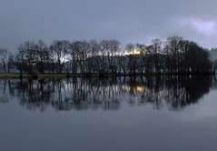 WHAT DAWN REVEALS (explore) (kenny barker) Tags: trees winter water landscape lumix dawn scotland day cloudy loch trossachs hypothetical gloaming lochard kinlochard landscapeuk panasoniclumixgf1 welcomeuk kennybarker