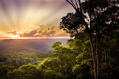 The Vast Blue Mountains (edwinemmerick) Tags: trees sunset sky sun mountains 20d weather forest canon eos nationalpark australia bluemountains hills nsw edwin worldheritage glenbrook emmerick edwinemmerick