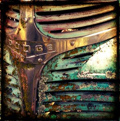 DODGE GRILLE (Hunky_hubby) Tags: classic northerncalifornia truck rust antique dodge suttercounty tazmichaelg