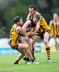 """IMG_9982 (Go to """"Albums"""" for all pics) Tags: club football dolphins boxhill frankston hawks vfl"""