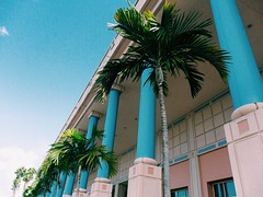 Pastel building (chloejadeyoung) Tags: travel family pink blue trees summer vacation sky usa sun holiday hot building green nature america outdoors photography student warm break colours florida miami pastel branches sunny palm abroad heat tropical humid 2015