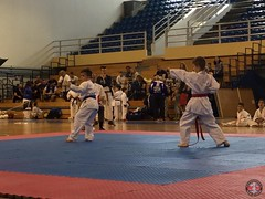 stefanou_15_5_2016_knockdown_226