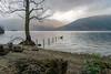 Rowardennan (bazdonk) Tags: tree water fence landscape scotland nikon cloudy hills final loch lomond trossachs lochlomond rowardennan d3300