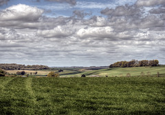 near Sparsholt, Hampshire (neilalderney123) Tags: green clouds landscape farm olympus hampshire winchester sparsholt 2016neilhoward