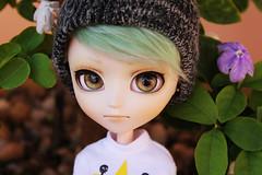 (Hnmi) Tags: travis isul mao isulmao green hair brown eyes beanie doll groove