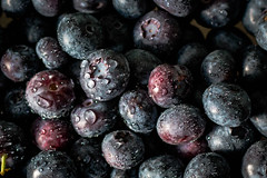 Blueberries and droplets (WillemijnB) Tags: food fruits fruit droplets berry blauw berries blueberry bleuets baie bes bleuet druppels voedsel myrtille bosbessen baies myrtilles bosbes blauwebosbes