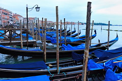 Good Morning Venice! (christine zenino) Tags: morning venice vacation italy lagoon gondolas