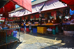 Chicken and Duck Section of Khlong Toei Market (2121studio) Tags: thailand bangkok siam travelphotography amazingthailand  travelinthailand khlongtoeymarket khlongtoeimarket  landoftiger landofwhiteelephant thaitourinformation