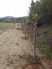 """Preparant el pati per estocar fusta i biomassa <a style=""""margin-left:10px; font-size:0.8em;"""" href=""""http://www.flickr.com/photos/134196373@N08/27313678666/"""" target=""""_blank"""">@flickr</a>"""