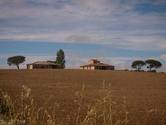 CRW_7470-1 (03TTAM) Tags: landscape toscana paesaggi viafrancigena