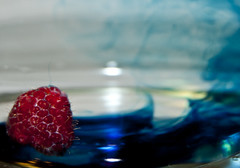 Raspberry_2 (albinobobman) Tags: blue light red water fruit berry colorful raspberry swirl