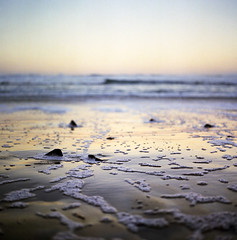the waves whisper good morning (manyfires) Tags: ocean sea film beach oregon sunrise mediumformat square landscape coast sand waves shoreline pale hasselblad pacificocean shore pacificnorthwest coastline neskowin muted hasselblad500cm