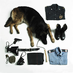 Elena Aleksandrovna Bykova, police sergeant. A militia officer and canine handler. Squad 2, troop 3 of Militia Patrol-Guard Service, a subdivision of Internal Affairs Directorate of Nizhniy Tagil and Gornouralskiy district. The pet - a German shepherd nam (Serov Vladimir) Tags: fashion clothing shoes war uniform russia fear rifle helmet machine police camouflage soldiers aggression protection handcuffs machinegun weapons specialforces chechnya bodyarmor theoperationofthegun
