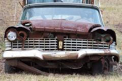 1959 Plymouth Belvedere Resting (edrodzen) Tags: cars newjersey rust nj plymouth belvedere junkyard 59 1959 morriscounty columbiatrail ef28135isusm canoneos7d