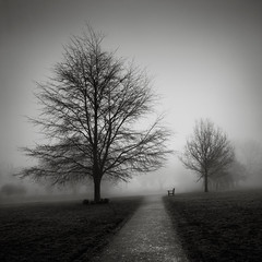 The Quiet Seat (Andy Brown (mrbuk1)) Tags: park morning trees winter light mist grass fog bench square landscape mono blackwhite chair mood pavement path bare branches fineart lawn atmosphere hidden devon grayscale deciduous stark slant skeletal slope newtonabbot tonality