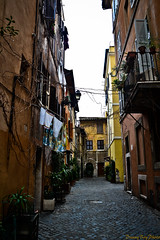 Rome. Small Village. (Daniele Salutari) Tags: wow photography photo amazing cool fantastic shoot foto shot good great capture dannyboy