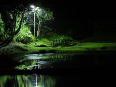 P1020543 (FdoDuarte) Tags: parque naturaleza lumix paisaje panasonic viajes fotos cartagena medellín arví fz47