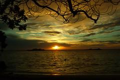 2011_08_MALDIVAS_20110819_0286