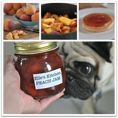 The product tester agrees, it's good. (1773) Tags: food dog cooking miguel peach pug jam elleskitchen