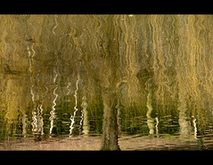 A different life (Stuart-Lee) Tags: england water kent inversion leedscastle refelction