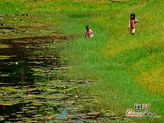 Kids Playing - Beng Mealea.jpg