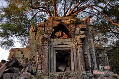 The Temple 4- Beng Mealea.jpg