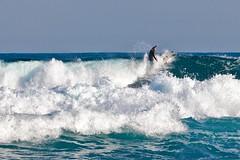 Rompiendo la ola (Jose Casielles) Tags: surf olas hombre mar fuerza agua color luz pericia deporte valor fotografíasjcasielles yecla cabodelashuertas alicante sanjuan