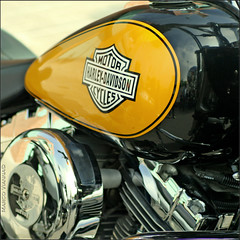 Harley Ripollet # 3 (m@tr) Tags: barcelona espaa canon country harleydavidson catalunya tamron motos ripollet canoneos400ddigital mtr marcovianna tamronaf70300mmf456dildmacro harleydavidsonripollet2007 trobadaharleyripollet
