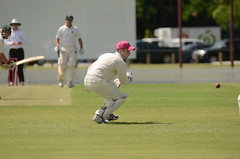 tokina cricket 027 (mushu2011) Tags: cricket redlands atx300afpro