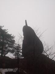 Dolphin Rock (David R. Crowe) Tags: china nature animal mammal dolphin imitation anhui attributes tangshan delphinidae