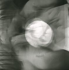 bamboo cresent (geiza_dobashi) Tags: camera light 120 film mediumformat lomo kodak doubleexposure bamboo lubitel kodaktmax400 multi multiexposure lomolubitel166b shotat400iso unknownfaultduringdeveloping knowideawhattheotherimagepeepingthroughis