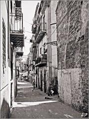 Palermo (Indian_Forever) Tags: street blackandwhite bw italy film public 35mm photography outdoor candid streetphotography sicily palermo biancoenero reportage anni70 pellicola documentaryphotography blackwhitephotos streetfotografie mygearandme ringexcellence indianforever
