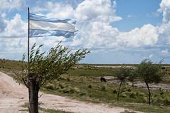 Bicentenario (diegohernanibarra) Tags: argentina nikon bandera crdoba losgigantes bicentenario diegohernanibarra