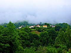 En la ladera (Jesus_l) Tags: espaa europa oviedo niebla somiedo parquenaturaldesomiedo jesusl