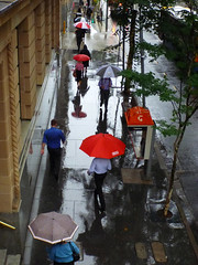 Rainy Days and Mondays (Patricia Woods) Tags: street city reflection rain umbrella pedestrian sidewalk monday footpath day248 adelaidestreet