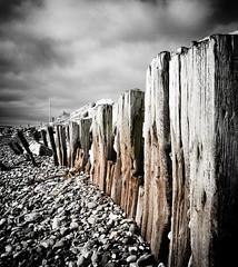 Garryvoe Beach, Cork (James C Farmer) Tags: ireland sea blackandwhite white black beach canon cork pebbles eire selectivecolour garryvoe g9