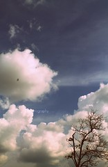 sky~~ (yaniELF) Tags: sky nature indonesia ashowoff
