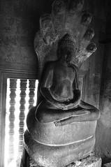 Angkor Wat - 2012-03-25 - 085848
