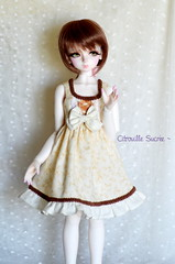 Lolita Dress (Citrouille Sucre) Tags: cute fashion kid doll dress handmade clothes lolita bjd luts delf bory jointed kdf hodoo