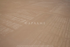 Azraq (APAAME) Tags: aerialarchaeology aerialphotography middleeast airphoto archaeology ancienthistory