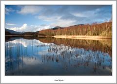 Sallochy Bay Sunlight (flatfoot471) Tags: winter rural landscape scotland lochlomond stirlingshire sallochybay