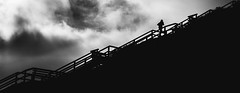 Up (Dan-Schneider) Tags: street camera sea sky people blackandwhite bw silhouette clouds photography europe streetphotography olympus scene best silence moment schwarzweiss decisive schneider momochrome mft einfarbig omdem10