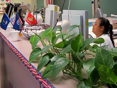 """""""Monitor Mary"""" (Gem Images) Tags: usa texas heart tech mary technician therapy lucio harlingen cardiac rehabitation"""