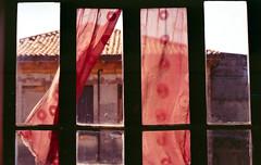 La finestra (Minchioletta) Tags: window curtain finestra pentaxmesuper tenda 400iso c41 kodakgold200 50mmlens smcpentaxa50mm smcpentaxa50mmf17 analogicait lomographyandvintagecameras