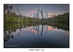 Margaret River (JChipchase) Tags: trees sunset water reflections river nikon d750 margaretriver