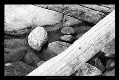 Wood&Rocks (gullihanne) Tags: bw monochrome norway contrast norge blackwhite rocks norwegen tre kontrast stein nordnorge fjre troms sorthvitt northnorway svartoghvit svarthvit salangen