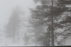 Tke (evbjone) Tags: fog vikerfjell