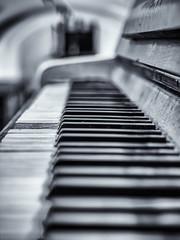 The piano has been drinking.... (katrin glaesmann) Tags: old blackandwhite berlin abandoned monochrome bath key piano ivory publicbath ebony 1908 steglitz klavier stadtbad keppler tasten phototour schwarzweis schwarzundweis schnleber