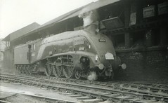 img624 (OldRailPics) Tags: st edinburgh steam kingfisher british locomotive railways margarets 64a 60024