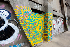 CrueSeine_0025 (cyberien 94) Tags: streetart seine graffiti paysage marne valdemarne alfortville confluent ivrysurseine charentonlepont